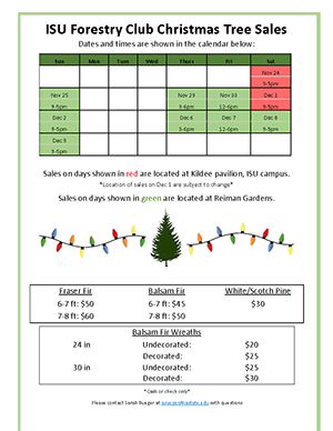 Christmas Tree flyer