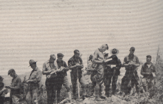 A line of foresters at the top of a tall hill, writing in notebooks.
