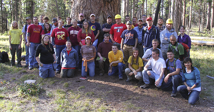2011 forestry group