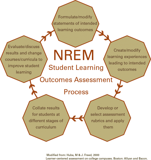 Chart of the learning outcomes assessment process