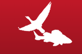 Iowa CFWRU logo image