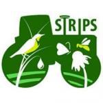 STRIPS logo