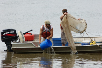 Clay and Grad Students quantifying Asian Carp in Iowa Rivers