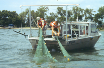 Two men draw up a large net from the river