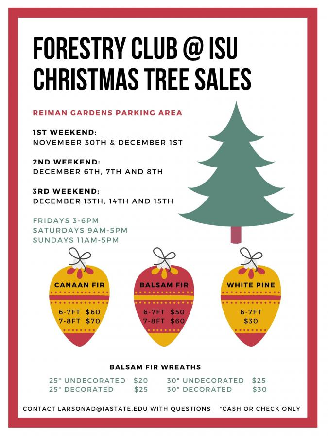 Forestry Club Christmas Tree Sales