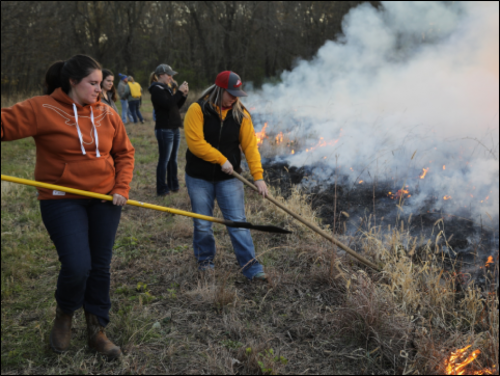 Students tend burnt grass