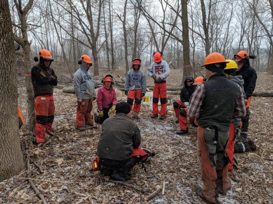 Chainsaw training group debriefing
