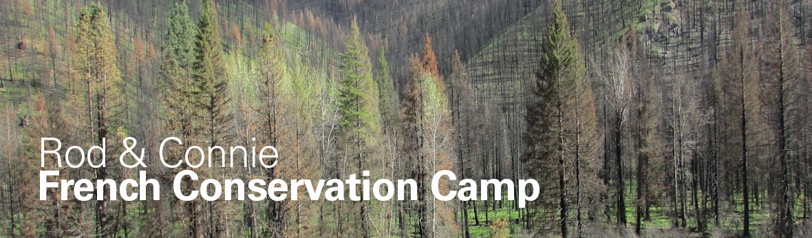 French Conservation Camp photo