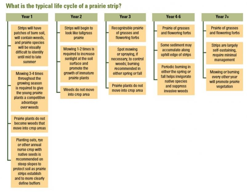 maint_life_cycle_flowchart