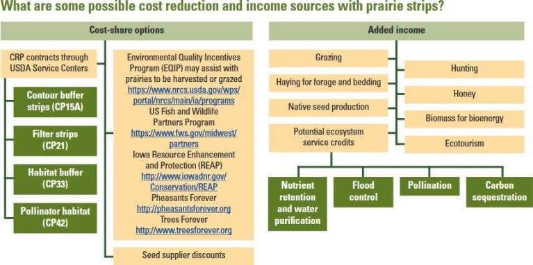 Cost Reduction & Income Sources Flow Chart