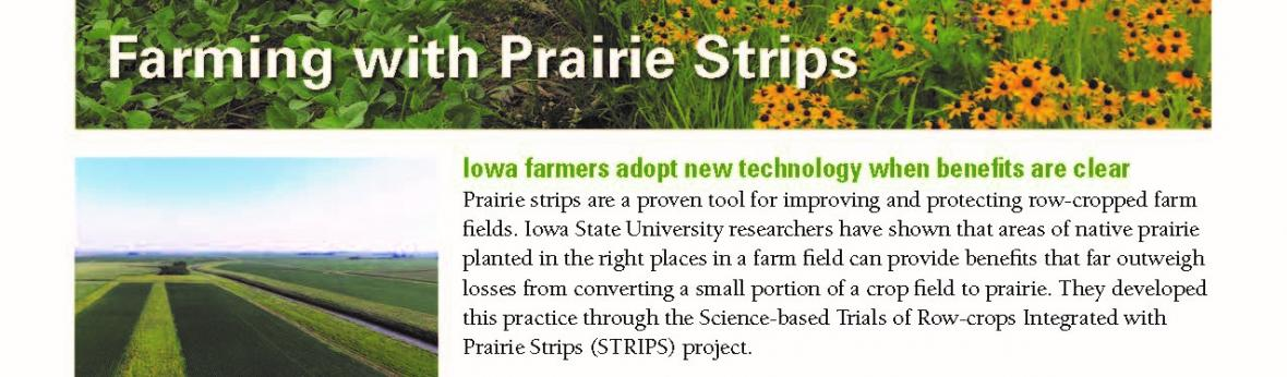 "Screen shot of the ""Farming with Prairie Strips"" Extension brochure"